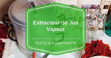 extracteur de jus vapeur comparatif avis