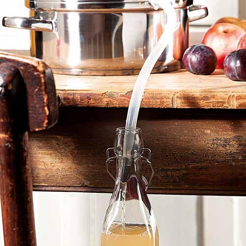 meilleur extracteur de jus vapeur